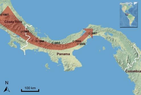 """A progressão ao sul da infecção pelo fungo """"chytrid"""" e o declínio e desaparecimento das populações de Anura na América Central"""